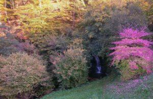 Natur, Wasserfall